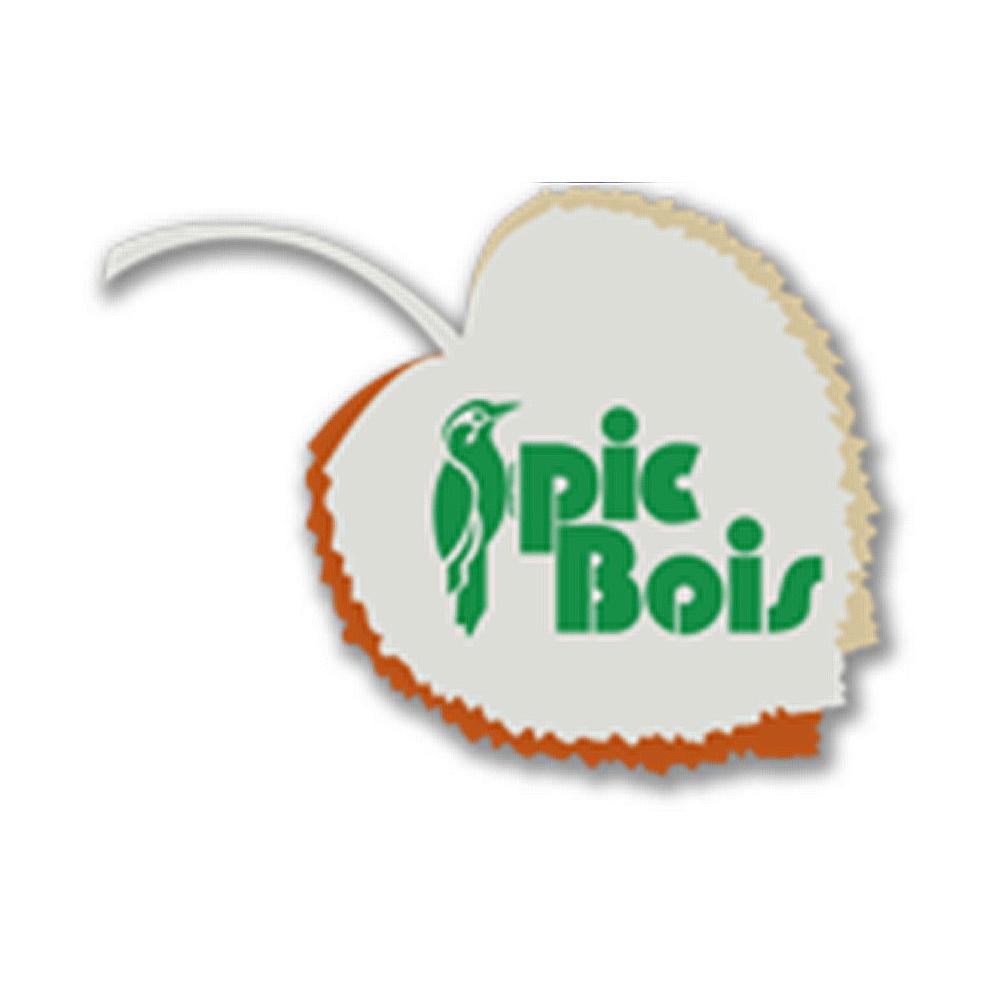Logo Pic Bois